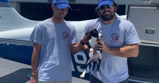 AEHV Sponsors Mission To Rescue Puppies From A High-Kill Shelter